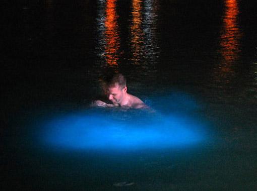 Swimming in Luminous Lagoon
