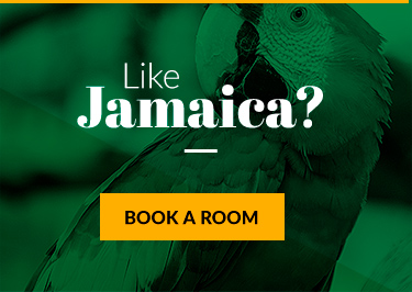 Jamaica vacation breaks record for visitors the travel current in jamaica everything is irie she explained referring to the friendly greeting used in jamaican patois the interaction with visitors provides memories m4hsunfo