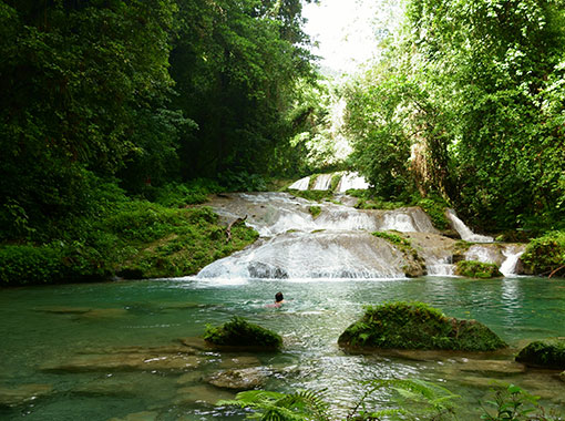 Wonderful natural ponds to swim and enjoy Caribbean ecotourism