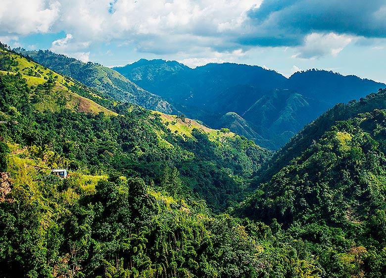 Meet and enjoy a beautiful tour of Blue Mountains Jamaica